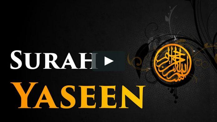 surah yasin in english
